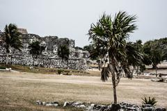 Stock Photo of ancient mayan architecture and ruins located in tulum, mexico off the yucatan