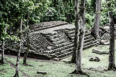 temples in the copan ruinas, honduras - stock photo