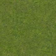 Real Grass Texture Stock Illustration