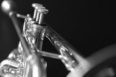 Trumpet 1 b&w Stock Photos