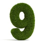 The Number Nine in Grass Stock Illustration