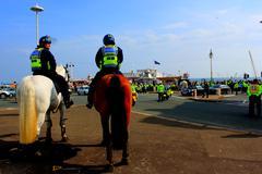 Police horses in Brighton, England Stock Photos
