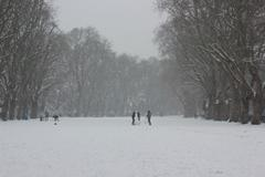 Stock Photo of People in the snow