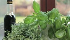 Fresh herbs in the kitchen, tracking shot HD - stock footage