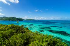 Jungle and Turquoise Water - stock photo