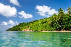 Lush Tropical Coast Stock Photos
