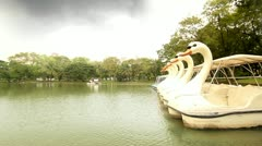Pond in Lumphini Park, Cloudy day Stock Footage