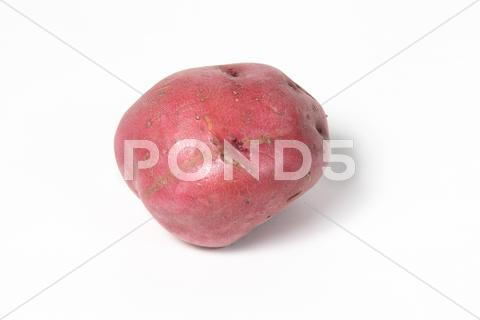 Stock photo of red potato on white background