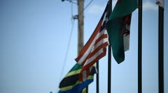 Flags Falpping in the Light Breeze - stock footage