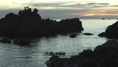 Beautiful ocean sunset, seabirds crane shot Stock Footage