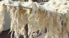 Wool Stock Footage