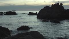 Beautiful ocean sunset, seabirds ship crane Stock Footage