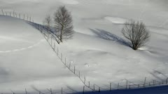 Trees, wood fence and untouched snow Stock Footage