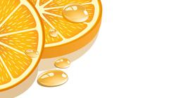 Stock Illustration of Slice of orange on a white background, illustration