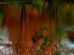 Bath Maine  Autumn Stock Footage