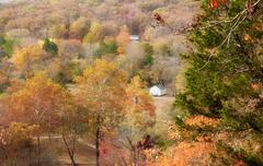Ozarks forest in fall Stock Photos