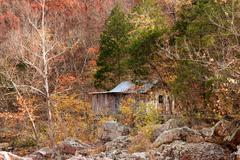 old settlers cabin in the forest - stock photo