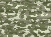 Camo camouflage material Stock Illustration