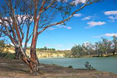 murray river - stock photo