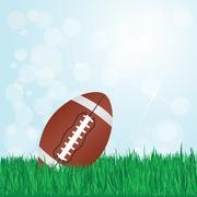 Football on grass Stock Illustration