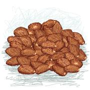 Cacao beans Stock Illustration