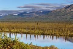 Järvi Alaska Kuvituskuvat