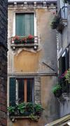 Venetian windows with planter boxes Stock Photos