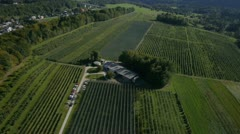 AERIAL: high flight over apple orchard - stock footage