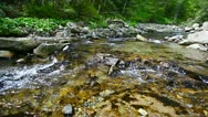 1920x1080 hidef, hdv - small forest river Stock Footage