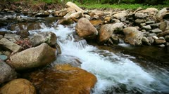 1920x1080 hidef, hdv - mountain forest stream - stock footage