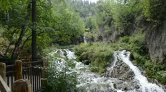 Waterfalls in the Black Hills Stock Footage