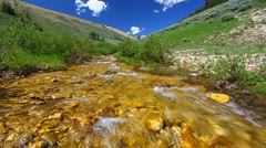 Bighorn Mountains Stream Stock Footage