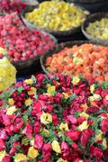 roses for sale at indian flower market - stock photo