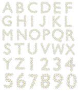 Plumeria alphabet Stock Photos