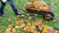 Woman hands gloves load barrow cart autumn leaves garden carry Stock Footage