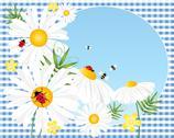 Ladybugs and daisies Stock Illustration