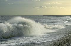 Windy seashore Stock Photos