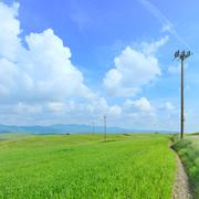 Electric power line, green field and light cloudy blue sky Stock Photos