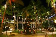 Christmas Tree in Hawaii Stock Photos