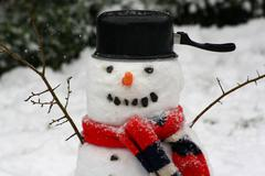 A snowman- trendy and glamourous. Stock Photos