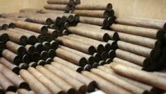 Cuban traditional industry, handmade cigars and tobacco in Havana, Cuba Stock Footage