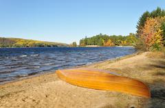 fall in algonquin provincial park - stock photo