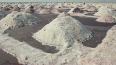 Salt mining on Sambhar lake in India Stock Footage