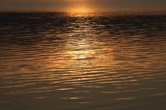 water gleam - stock photo