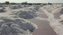 Salt mining on Sambhar lake in India Stock Footage