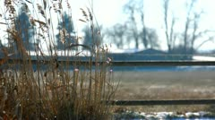 Rural scene at winter - stock footage