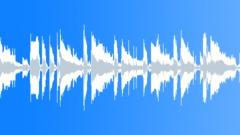 Stock Music of Recorder Loop