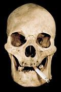 Smoking Skull Isolated on a Black Background Stock Photos