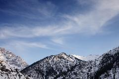 mountains covered with snow and forests - stock photo