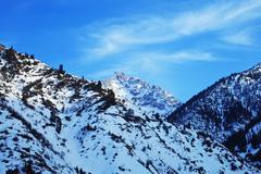 Vuoristomaisema Kuvituskuvat